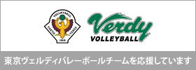 VERDY VOLLEYBALL